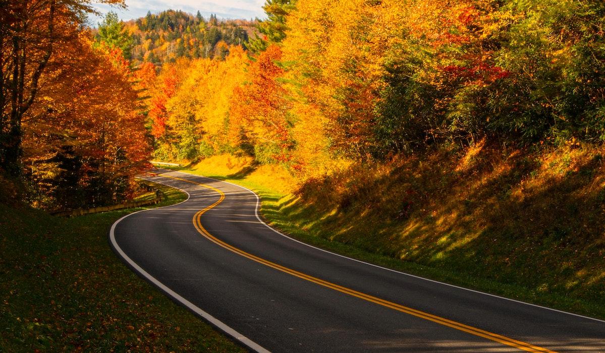 Kuvituskuva tiemaisemasta. Asfalttiautotie kaartuu oikealle ruskaisten puiden ympärillä.